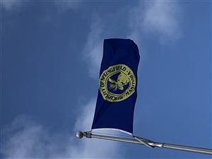 RM of Springfield Flag